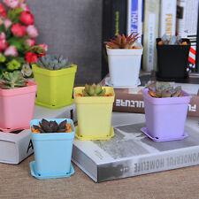 Mini 7pcs Square Plastic Succulent Plant Flower Pots Nursery Garden Decor 2017