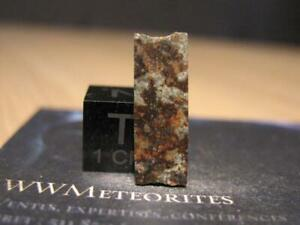 Valera meteorite (Venezuela) - Fell october 15, 1972 and killed a Cow !!!