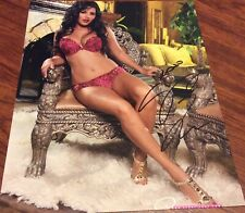 SUNNY LEONE ADULT FILM PORN STAR PORNSTAR SIGNED 8x10 PHOTO AVN SEXY