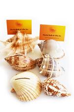 Real Seashell Place Card Holders Beach Wedding Nautical Party Coastal Decor (50)