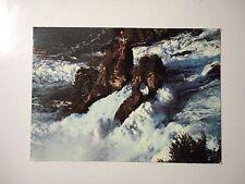 [GCG] RHEINFALL SCHWEIZ - Cartolina-Postcard - ORIGINALE VIAGGIATA -9