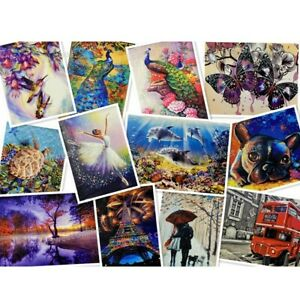 Acrylic Painting By Numbers Kit Craft DIY Paint On Canvas & Frame Art Project