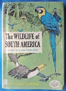 """The Wildlife of South America"" Dorothy Shuttleworth HC/DJ c1966 Animals Vintage"