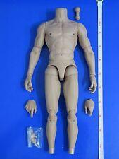 Hot Toys TRUETYPE TTM19 Figure - Nude Body w/Hands 1:6 scale