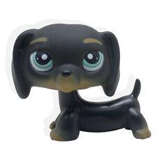 #325 Littlest Pet Shop Black Dachshund Dog Chien Teckel Puppy Blue Eyes LPS Rare