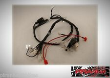 wire harness assy monkey SKYTEAM STALLIONS PIRANHA FLASHBACK LONCIN