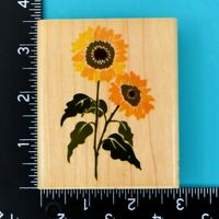 Garden Sunflower Z483-F Flowers Rubber Stampede Wood Mounted Rubber Stamp 1998