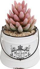 Rustic White Ceramic Maison Pail Design Succulent Flower Planter Decorative Jar