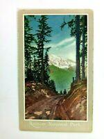 Vintage Postcard Rainier National Park Forest and Mountain Scene
