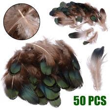 50Stück Natürliche Fasan Hahnenfedern Flügelfedern Federn Pad Feather Schmuck