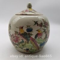 Collect China Famille-rose Porcelain Flower Bird Round Bead Pot Kettle Tea Caddy