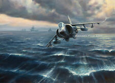 Sea Harrier HMS Hermes Falklands War 1982 Aircraft Plane Painting Art Print