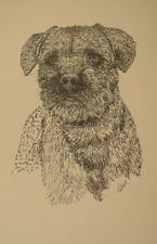 Border Terrier Dog Art Portrait Print #30 Kline adds dog name free. Word Drawing