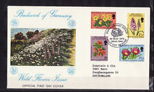 Guernesey  enveloppe  fleurs sauvages  1972