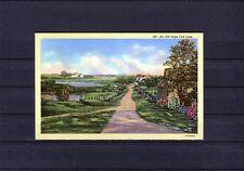 """schöne Ansichtskarte Amerika, Cape Cod (""""an old cape cod lane"""")"""