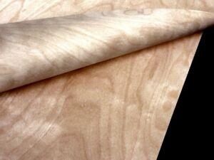 24 Blatt BIRKE FURNIER Blatt echt Holz Dekor Design Platten Möbel Brett Intarsie