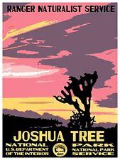 "Art National Park Joshua Tree Rare Hot New 12x16"" TR61"
