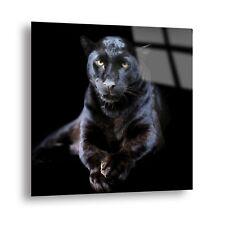 Dark Black Leopard Glass Picture Tempered Glass Wall Art Print on Glass 80x80cm