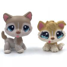 2PCS Littlest Pet Shop dogs LPS toys Husky #1012 BABY Husky #1013 cute Puppy Dog