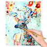 DIY Oil Painting Kit Rainbow Deer Paint By Numbers For Adults Child Beginners