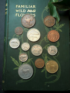 Old Irish Pre-Euro Animal Coins for Prosperity, Spells, Magic - Pagan, Wicca