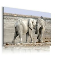 SAWANNA ELEPHANT Wild And Domestic Animals Canvas Wall AN198 UNFRAMED-ROLLED