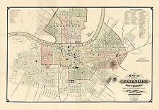 1877 Wall Map Nashville and Vicinity Art Poster Decor Vintage History Genealogy