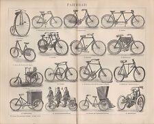 Lithografien 1902: Velociped. Fahrrad Velo Fahrräder Hochrad Dreirad Manuped