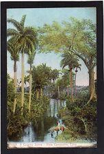 CUBA - Vista Campestre / Country Scene. Advertising p/c - Aux Galeries Lafayette