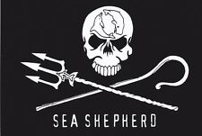 Sea Shepherd Jolly Roger Sticker - Anti Whaling Whale Wars Pirate Sticker