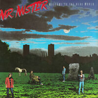 Mr. Mister / Welcome To The Real World