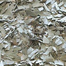 Foglie di eucalipto Eucalyptus Essiccato Erba, Loose tè alle erbe 50g