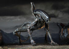 Alien Covenant- Figura de acción Xenomorfo 18 cm. Action figure Xenomorph