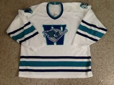 WORCESTER ICE CATS HOCKEY JERSEY BAUER LARGE