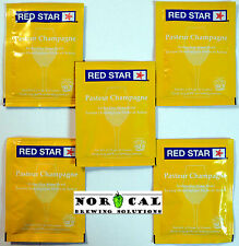 Fermentis Red Star PASTEUR CHAMPAGNE High Alcohol Active Dry Wine YEAST 5 PACK