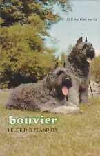 BOUVIER BELGE DES FLANDRES G.F. van Gink-van Es **VERY GOOD COPY**