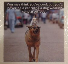 Think your cool cat riding a dog wearing sunglasses funny silly pet magnet