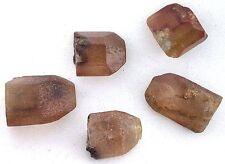 11.5 Gr 4 Golden Topaz Tepetate San Luis Potosi Mexico RARE Crystal Facet Rough