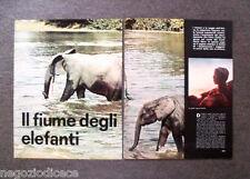 AY46 - Clipping-Ritaglio -1963- QUATTRORUOTE VIAGGI , AFRICA