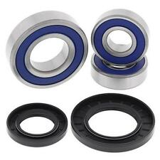 2004 - 2005 Kawasaki KLV1000 All Balls rear wheel bearing kit