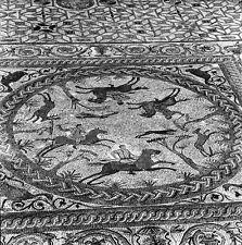 PORTUGAL c. 1960 - Mosaïques Conimbriga - Négatif 6 x 6 - Por 244