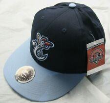 NWT Minor League Baseball Raised Replica Hat - Corpus Christi Hooks Youth