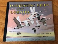 Lynn Bogue Hunt Game Bird Of USA Hunting American Book Art Print Original 1945