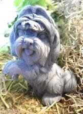 Dog Lhasa Apso  latex mold w plastic backup concrete plaster mould