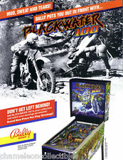 Bally BLACKWATER 100 Original 1988 NOS Flipper Game Pinball Machine Sales FLYER