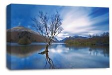 Artist Brown Landscape Art Prints