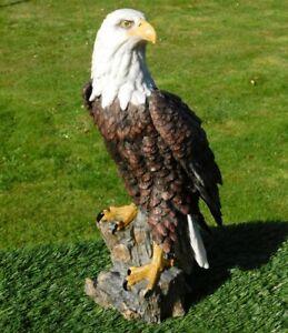 Gartenfigur Adler Greifvogel 9240 Weißkopfseeadler 42cm Garten lebensecht