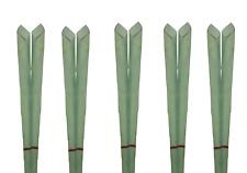 32 Ohrkerzen Konisch Aroma Körperkerzen Filter Ohrenkerzen Düfte Ear Candle