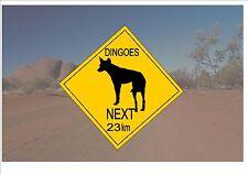 Segnale STRADALE stile australiano Australia Cartello Stradale Novità Divertente dingoe OUTBACK sign