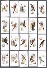1906 Lambert & Butler's Representing Birds & Eggs Tobacco Cards Complete Set